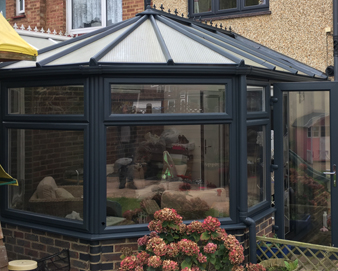 Conservatory Painting
